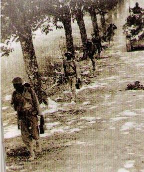 Armée Française de libération 1943-1945  : Petit guide uniformologique  Sanstitre55